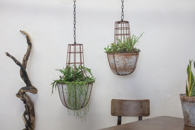 caged-planter-medium