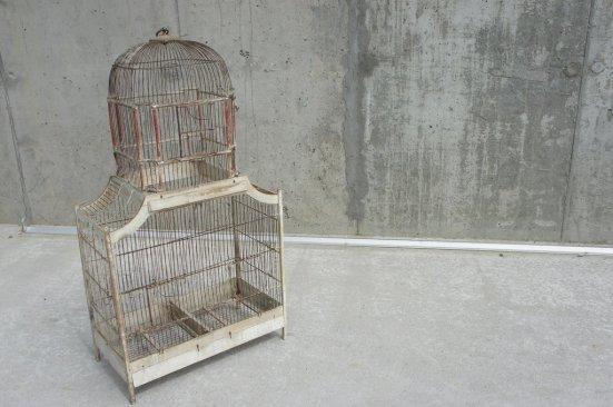 large-bird-cage